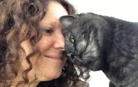 An Interview with the Late Dr Sophia Yin by Anita Kelsey (Cat Behaviourist) | Vet Index