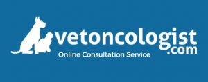 Online Consultation Service