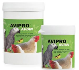 Vetark_Avipro_Avian-newsfeed